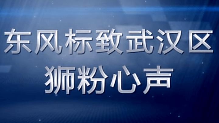 东风标致武汉区狮粉心声